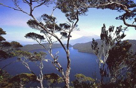 view gunung tujuh