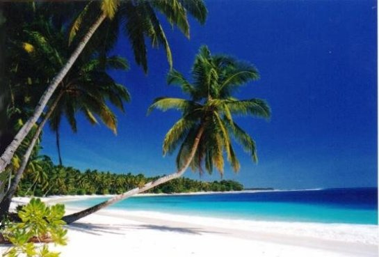 masilok beach mentawai-island